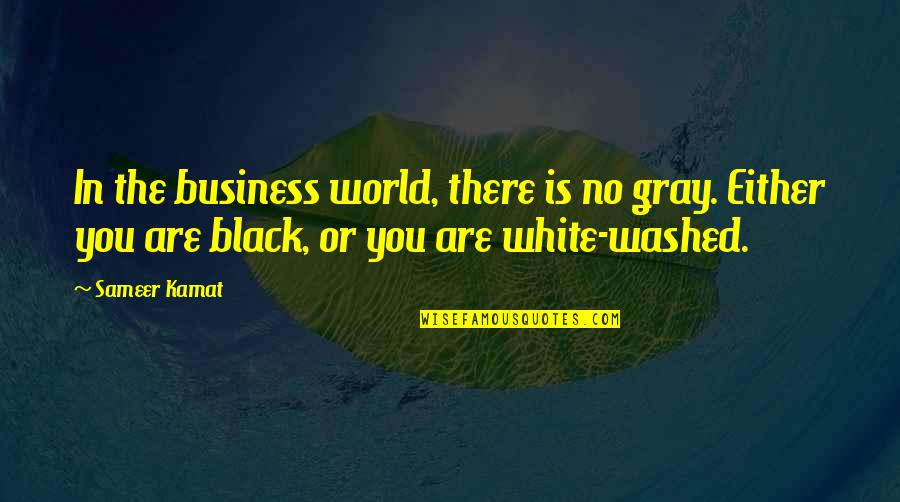 My Century Gunter Grass Quotes By Sameer Kamat: In the business world, there is no gray.