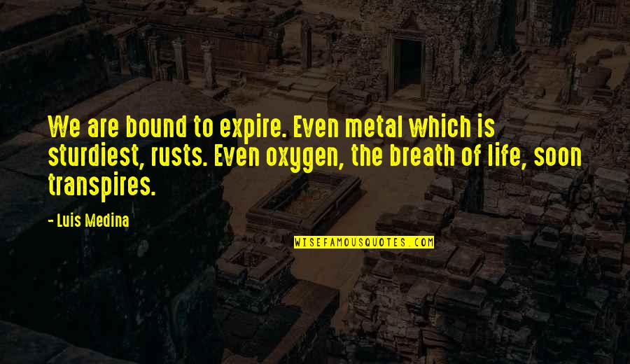 My Dear Son Quotes By Luis Medina: We are bound to expire. Even metal which