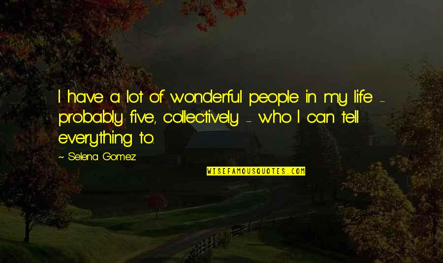 My Everything Quotes By Selena Gomez: I have a lot of wonderful people in
