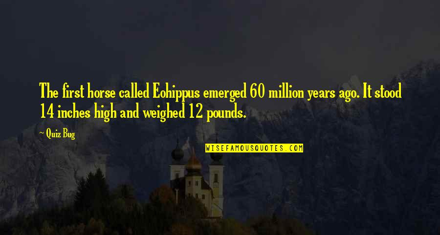 My First Horse Quotes By Quiz Bug: The first horse called Eohippus emerged 60 million
