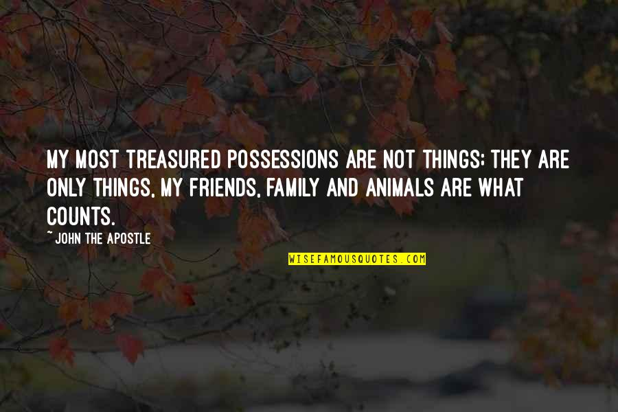 My Friends Are My Family Quotes By John The Apostle: My most treasured possessions are not things; they
