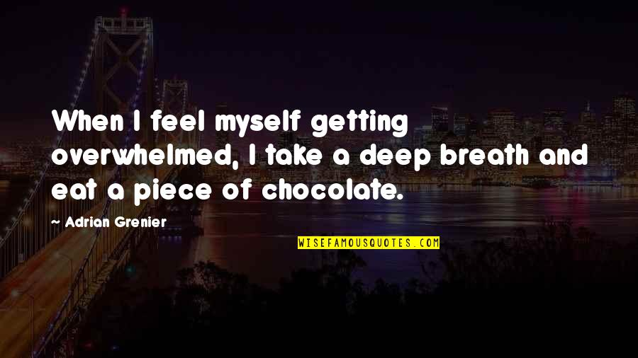 My Handsome Son Quotes By Adrian Grenier: When I feel myself getting overwhelmed, I take