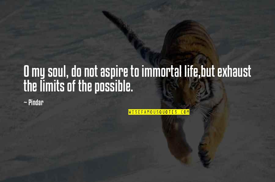 My Immortal Quotes By Pindar: O my soul, do not aspire to immortal