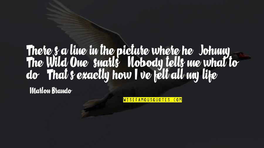 My Life In One Picture Quotes By Marlon Brando: There's a line in the picture where he