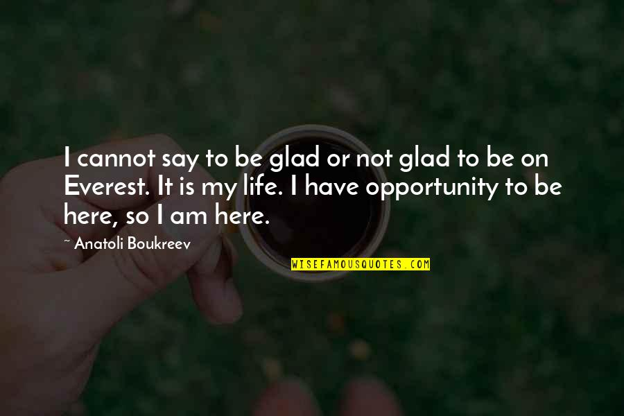 My Life Quotes By Anatoli Boukreev: I cannot say to be glad or not