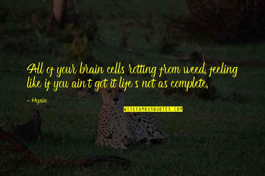 My Life With You Is Complete Quotes By Hopsin: All of your brain cells rotting from weed,