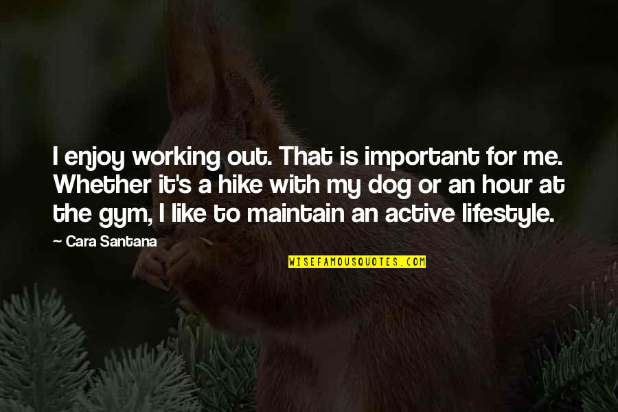 My Lifestyle Quotes By Cara Santana: I enjoy working out. That is important for