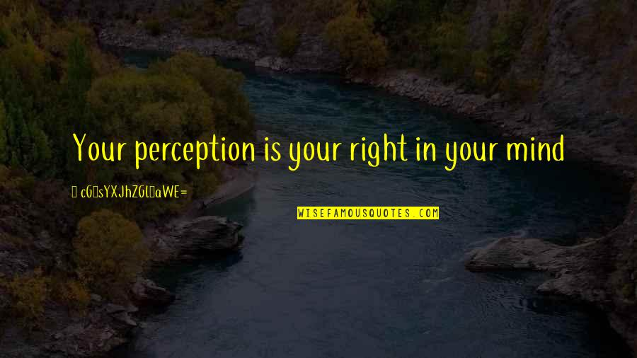 My Mind Right Now Quotes By CG9sYXJhZGl0aWE=: Your perception is your right in your mind