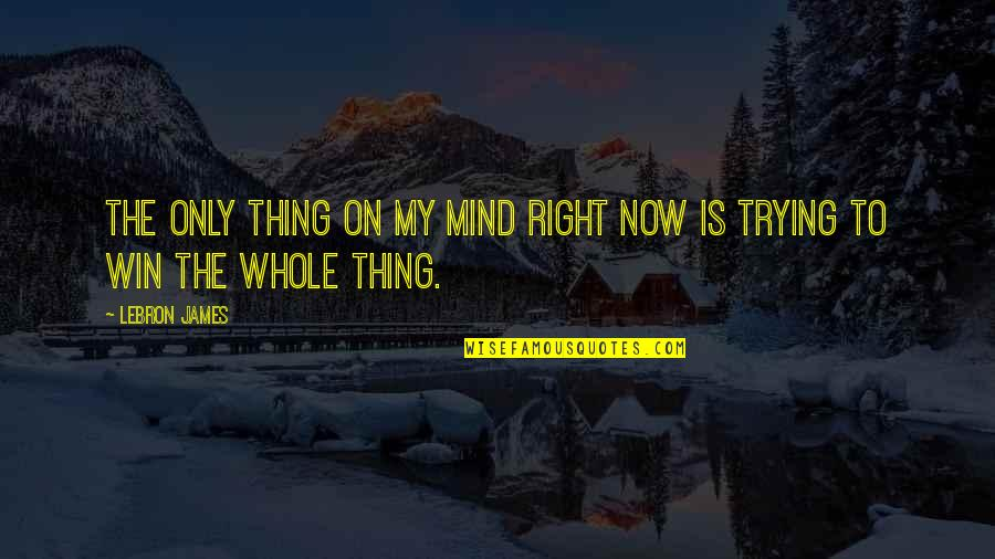 My Mind Right Now Quotes By LeBron James: The only thing on my mind right now