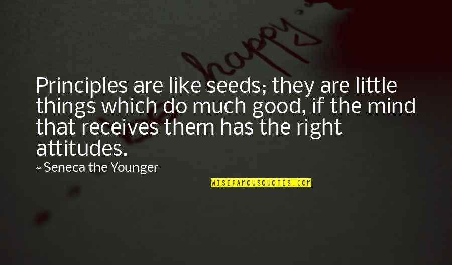 My Mind Right Now Quotes By Seneca The Younger: Principles are like seeds; they are little things