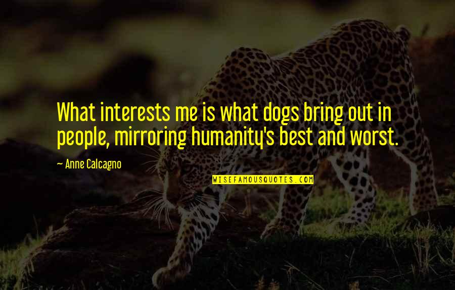 My Mind's Going Crazy Quotes By Anne Calcagno: What interests me is what dogs bring out