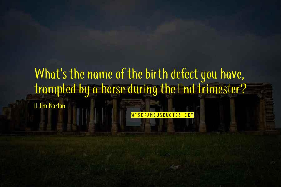 My Name Funny Quotes By Jim Norton: What's the name of the birth defect you