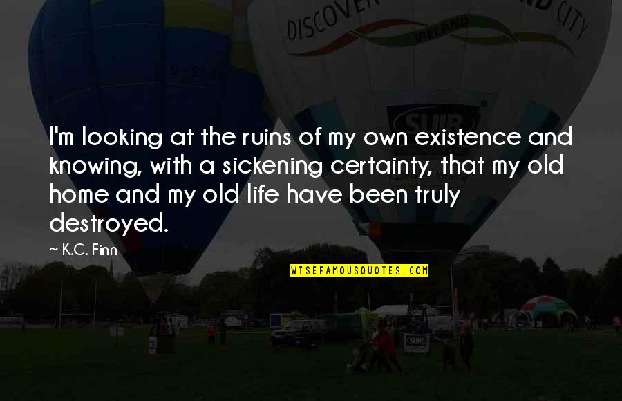 My Old Life Quotes By K.C. Finn: I'm looking at the ruins of my own