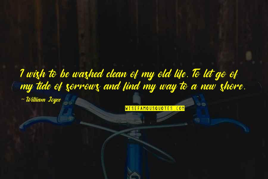 My Old Life Quotes By William Joyce: I wish to be washed clean of my