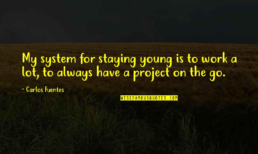 My Other Half Friendship Quotes By Carlos Fuentes: My system for staying young is to work