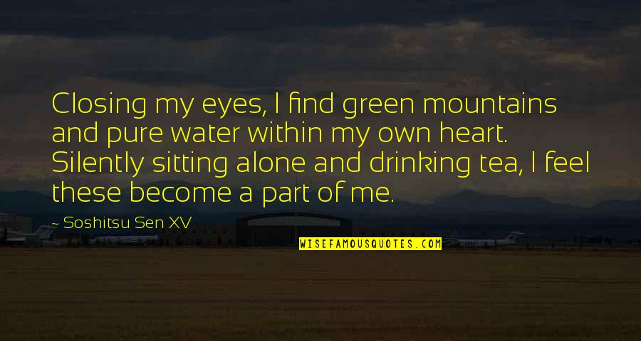 My Own Eyes Quotes By Soshitsu Sen XV: Closing my eyes, I find green mountains and