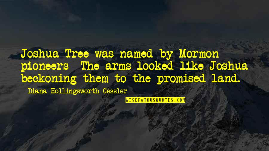 My Promised Land Quotes By Diana Hollingsworth Gessler: Joshua Tree was named by Mormon pioneers- The