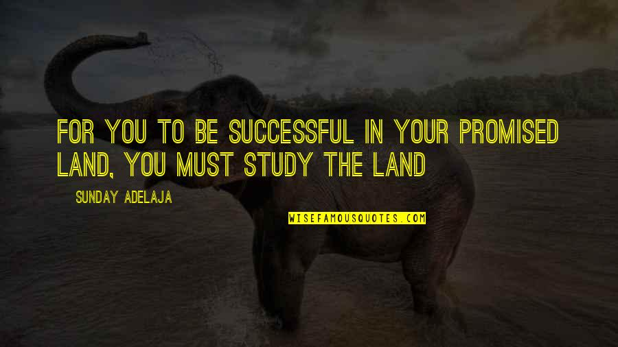 My Promised Land Quotes By Sunday Adelaja: For you to be successful in your promised