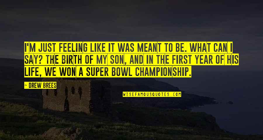 My Son Inspiration Quotes By Drew Brees: I'm just feeling like it was meant to