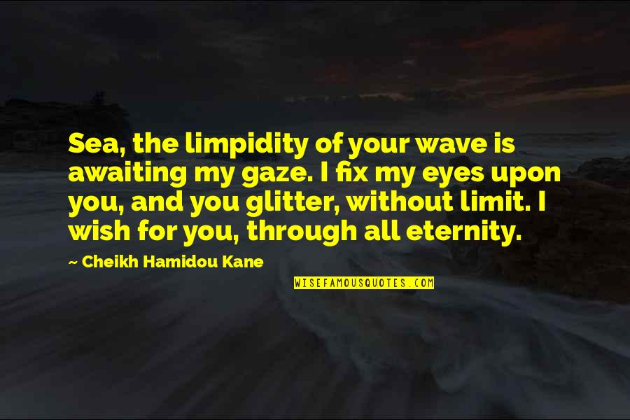 My Wish Is You Quotes By Cheikh Hamidou Kane: Sea, the limpidity of your wave is awaiting