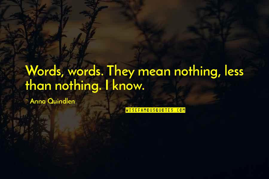 My Words Mean Nothing Quotes By Anna Quindlen: Words, words. They mean nothing, less than nothing.