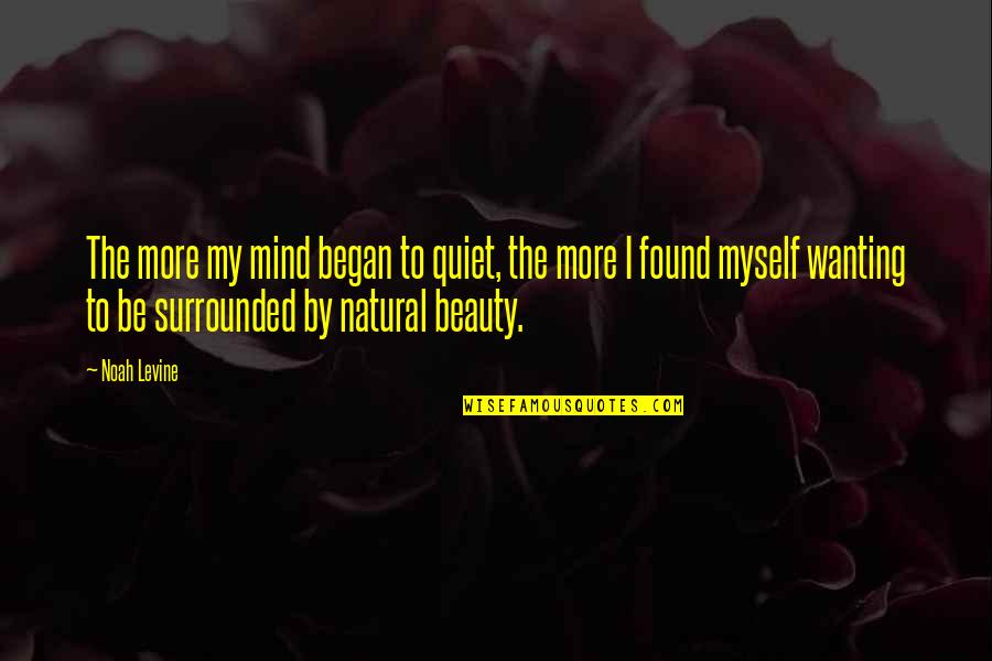 Myself Beauty Quotes By Noah Levine: The more my mind began to quiet, the