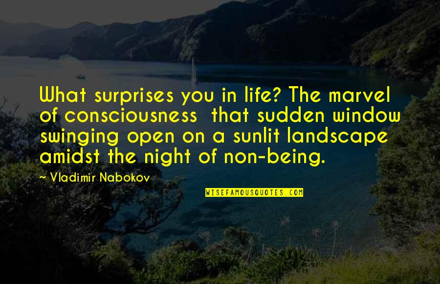 Nabokov Quotes By Vladimir Nabokov: What surprises you in life? The marvel of