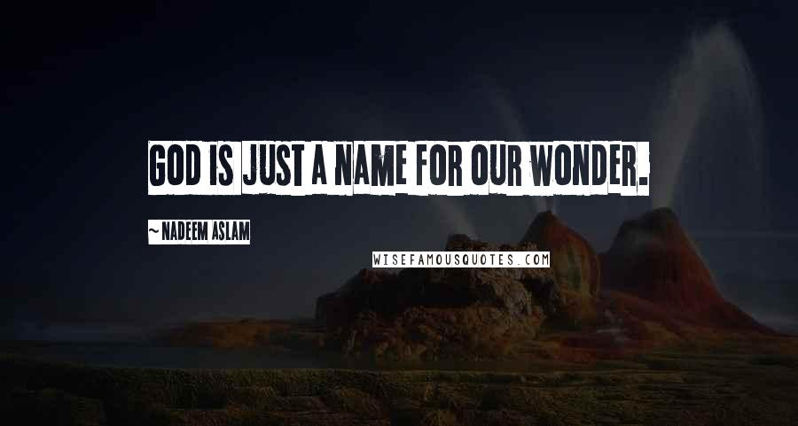 Nadeem Aslam quotes: God is just a name for our wonder.