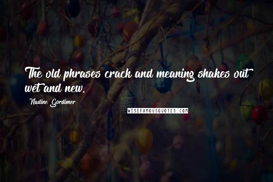 Nadine Gordimer quotes: The old phrases crack and meaning shakes out wet and new.
