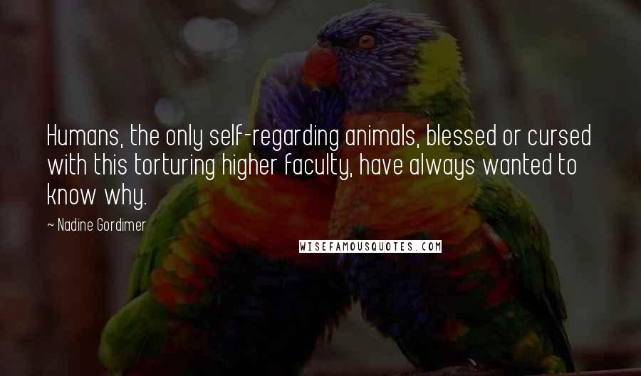 Nadine Gordimer quotes: Humans, the only self-regarding animals, blessed or cursed with this torturing higher faculty, have always wanted to know why.