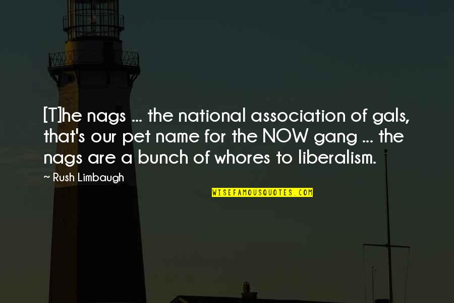 Nags Quotes By Rush Limbaugh: [T]he nags ... the national association of gals,