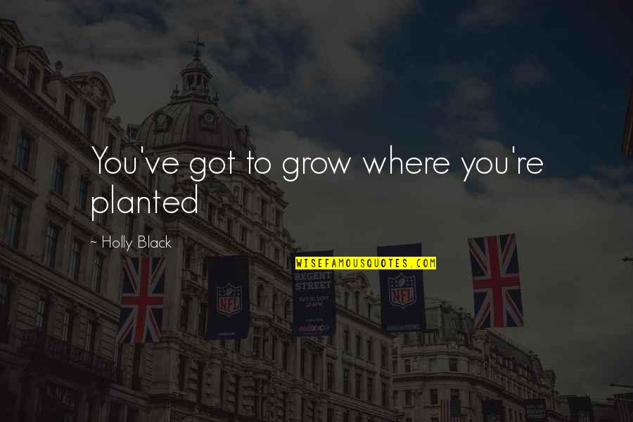 Najwa Shihab Quotes By Holly Black: You've got to grow where you're planted