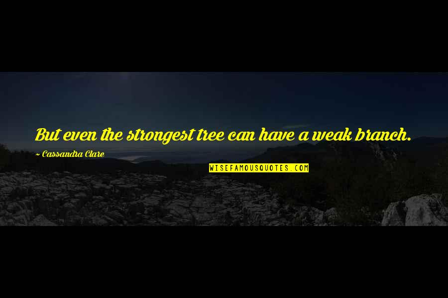 Namedropping Quotes By Cassandra Clare: But even the strongest tree can have a