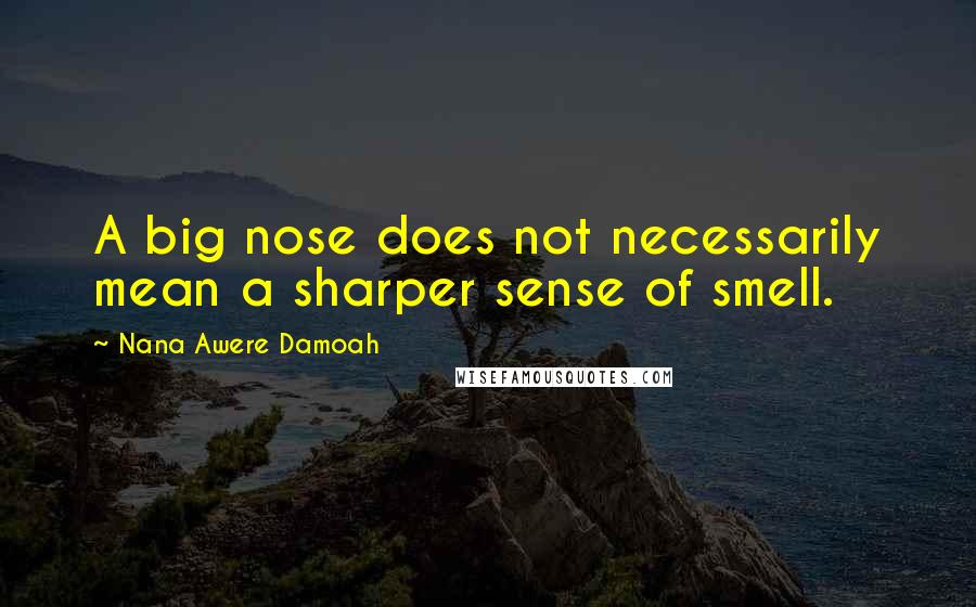 Nana Awere Damoah quotes: A big nose does not necessarily mean a sharper sense of smell.