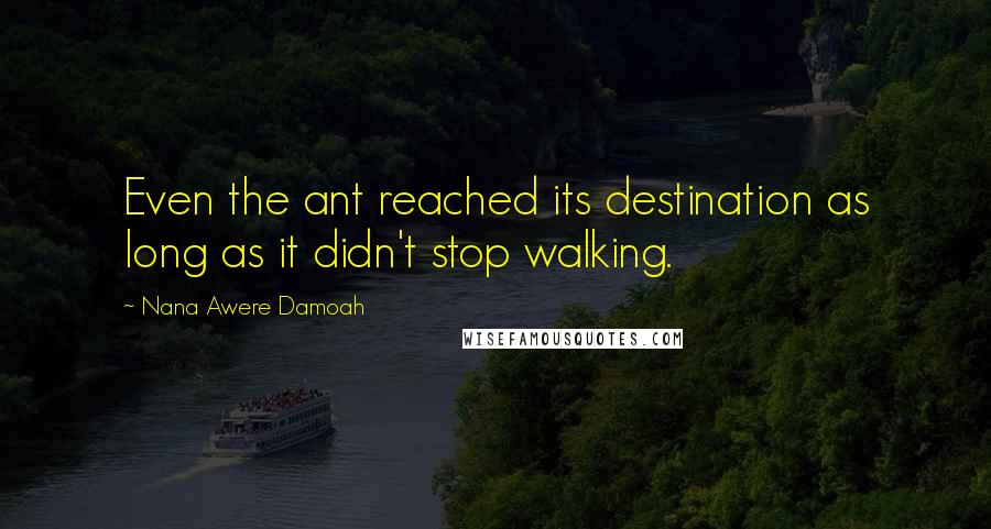 Nana Awere Damoah quotes: Even the ant reached its destination as long as it didn't stop walking.
