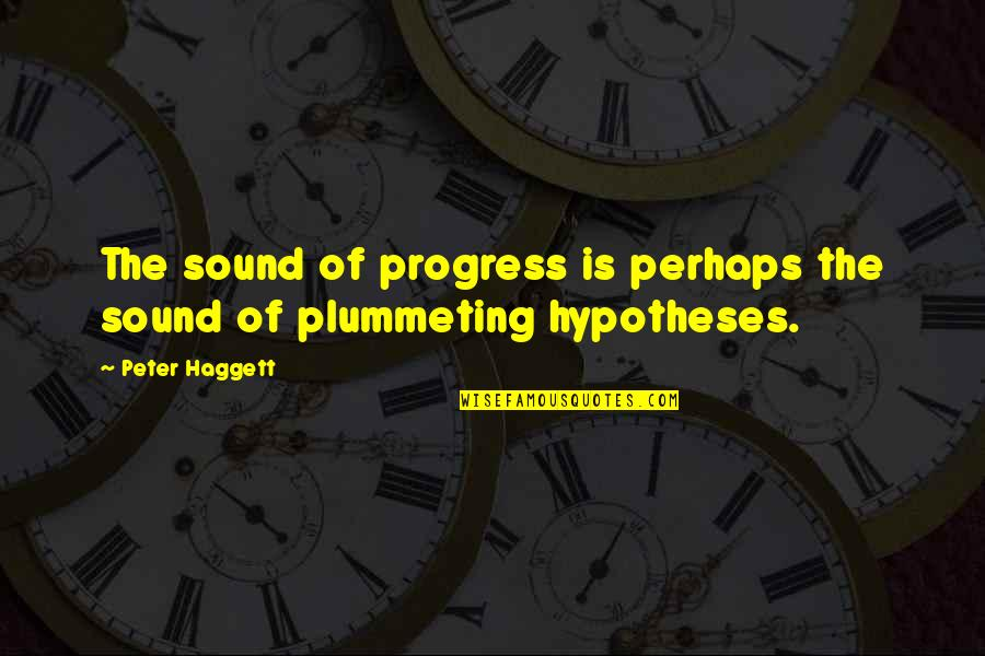 Nanjing Quotes By Peter Haggett: The sound of progress is perhaps the sound
