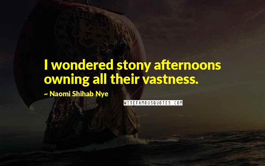 Naomi Shihab Nye quotes: I wondered stony afternoons owning all their vastness.