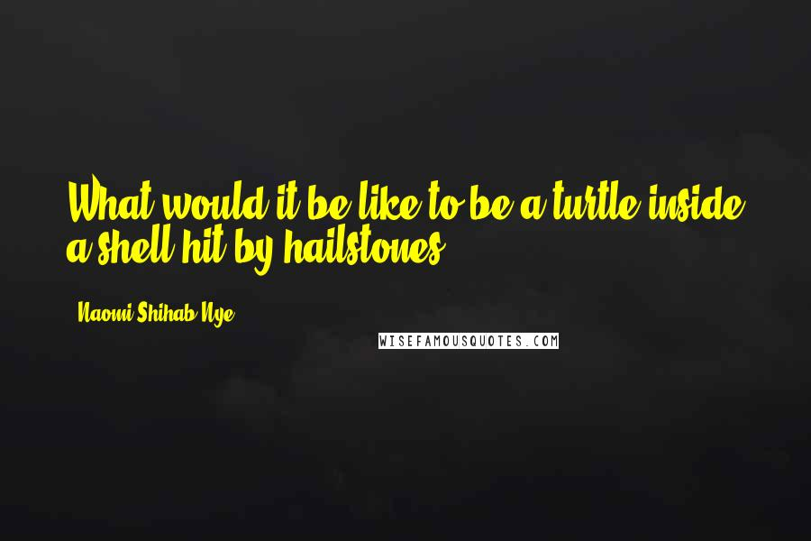 Naomi Shihab Nye quotes: What would it be like to be a turtle inside a shell hit by hailstones?