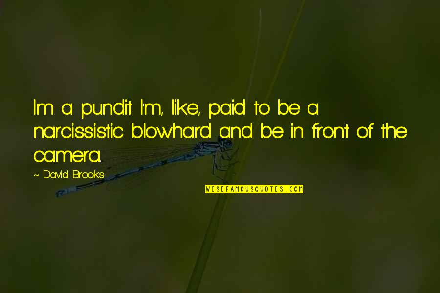 Narcissistic Quotes By David Brooks: I'm a pundit. I'm, like, paid to be