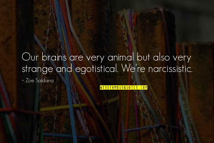 Narcissistic Quotes By Zoe Saldana: Our brains are very animal but also very