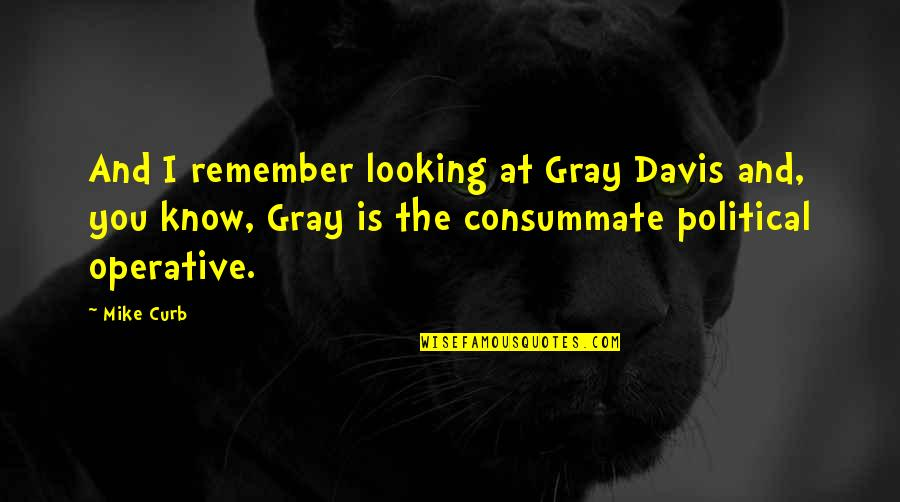 Nasty Gal Quotes By Mike Curb: And I remember looking at Gray Davis and,