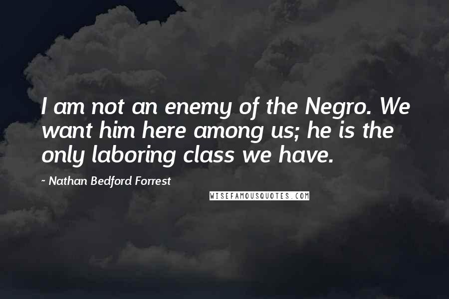Nathan Bedford Forrest quotes: I am not an enemy of the Negro. We want him here among us; he is the only laboring class we have.