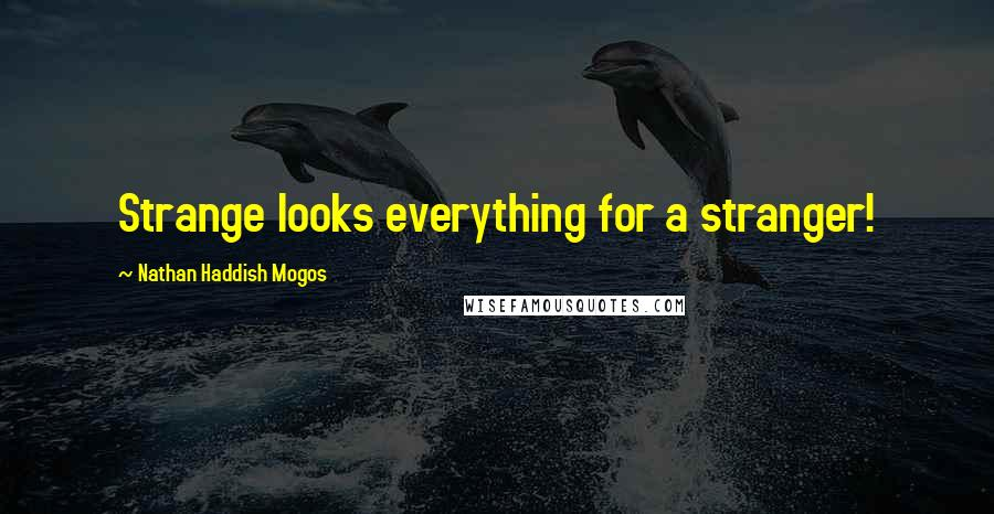 Nathan Haddish Mogos quotes: Strange looks everything for a stranger!
