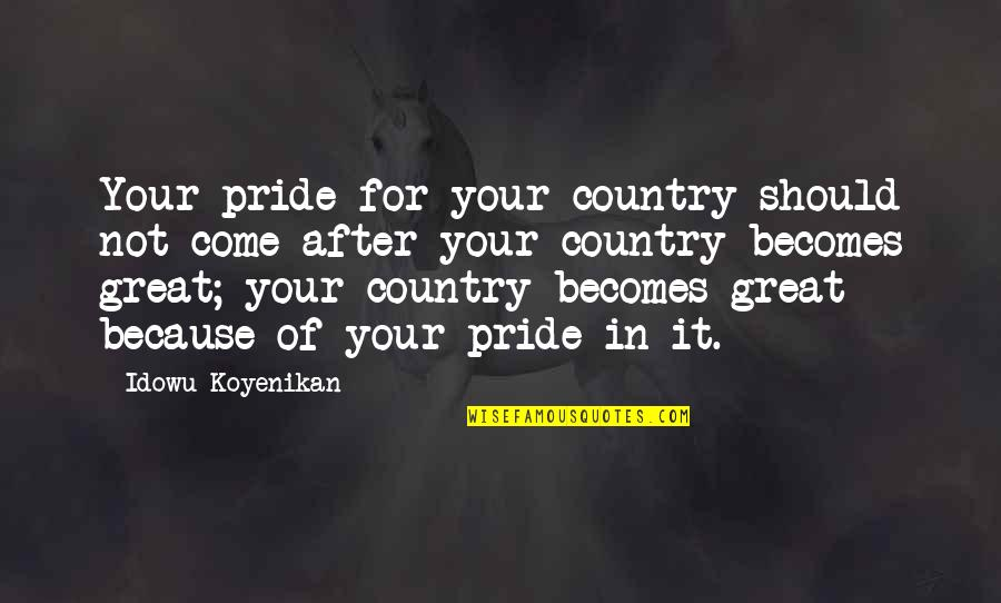 Nationality's Quotes By Idowu Koyenikan: Your pride for your country should not come