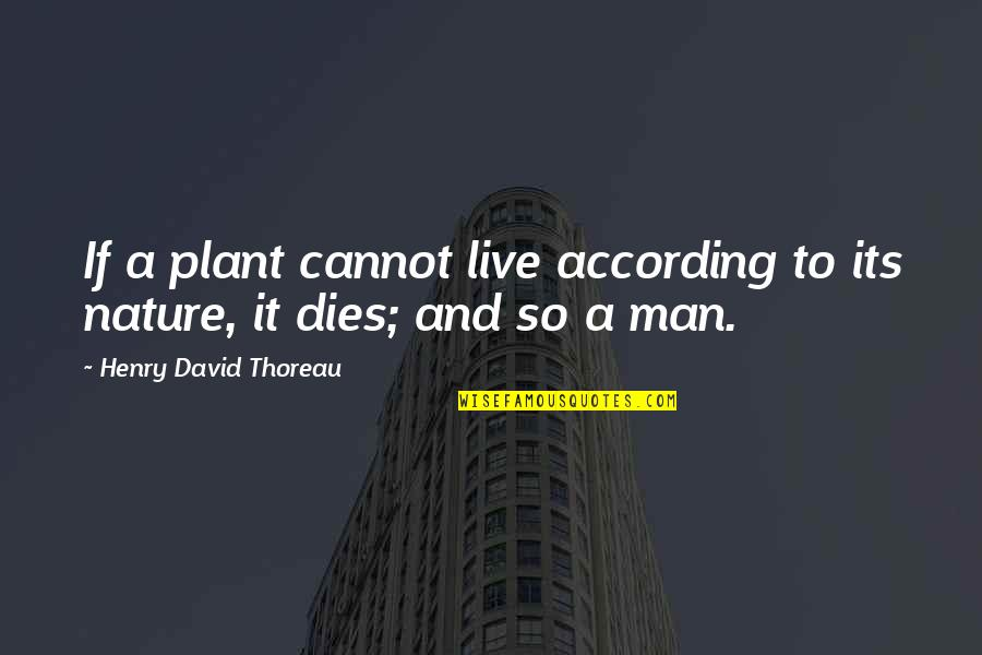 Nature And Man Quotes By Henry David Thoreau: If a plant cannot live according to its