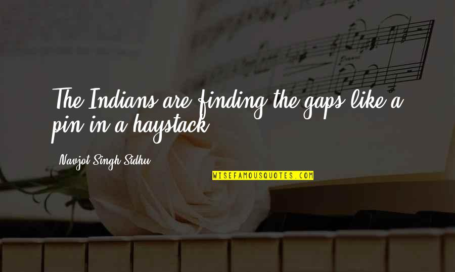 Nature Images With Friendship Quotes By Navjot Singh Sidhu: The Indians are finding the gaps like a