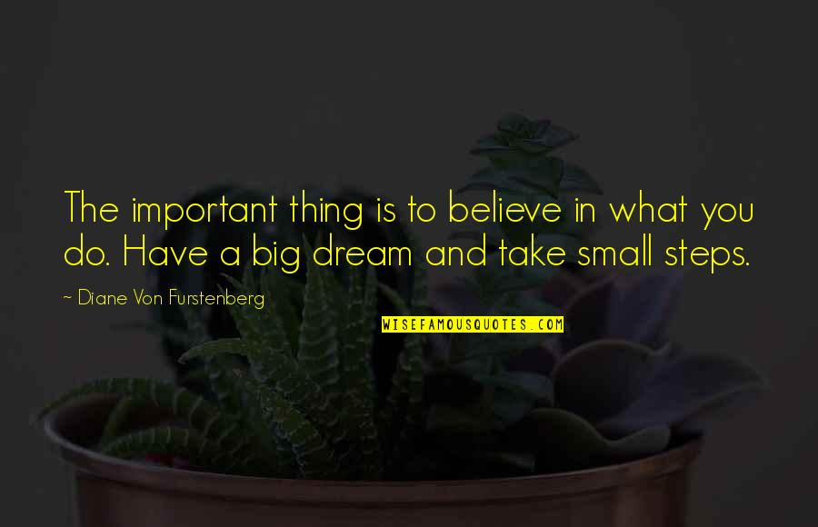 Ncis Gut Check Quotes By Diane Von Furstenberg: The important thing is to believe in what