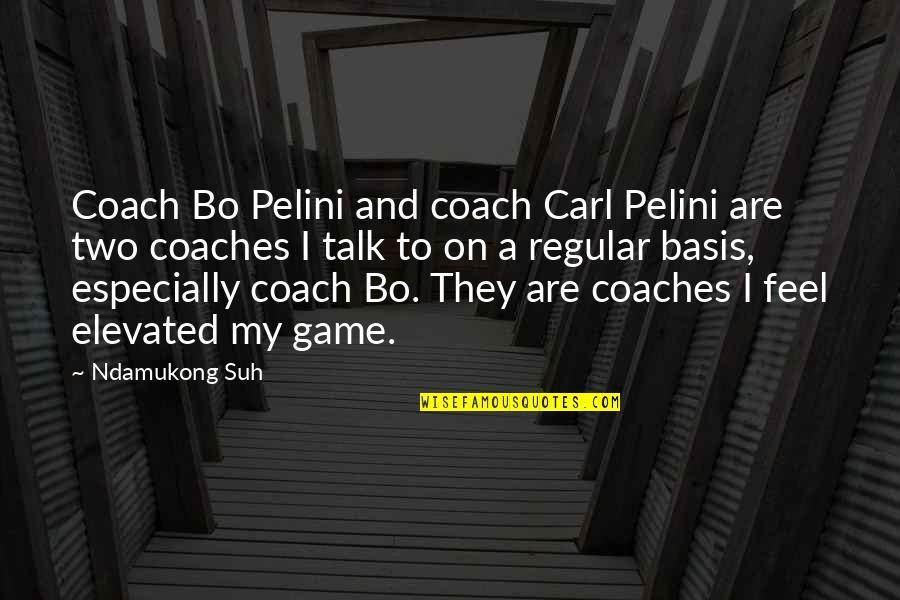 Ndamukong Quotes By Ndamukong Suh: Coach Bo Pelini and coach Carl Pelini are