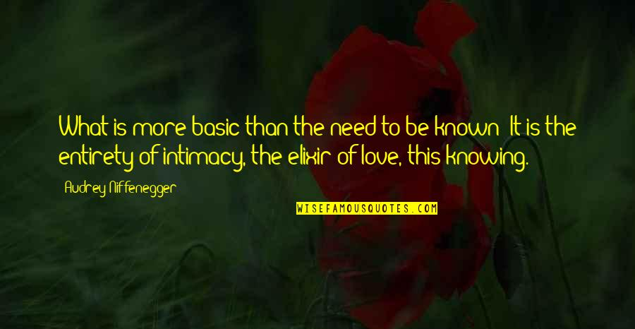 Need More Love Quotes By Audrey Niffenegger: What is more basic than the need to
