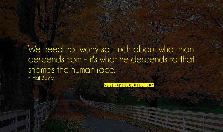 Need Not Worry Quotes By Hal Boyle: We need not worry so much about what